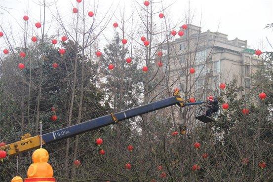 工作人员正在为树枝挂上灯笼